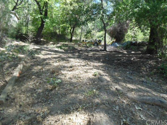 10750 Foothill Road, Loch Lomond, CA 95426 (#LC16174601) :: Fred Sed Group