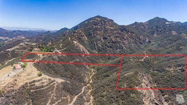 0 Lobo Canyon, Agoura Hills, CA 91301 (#216013066) :: Zutila, Inc.