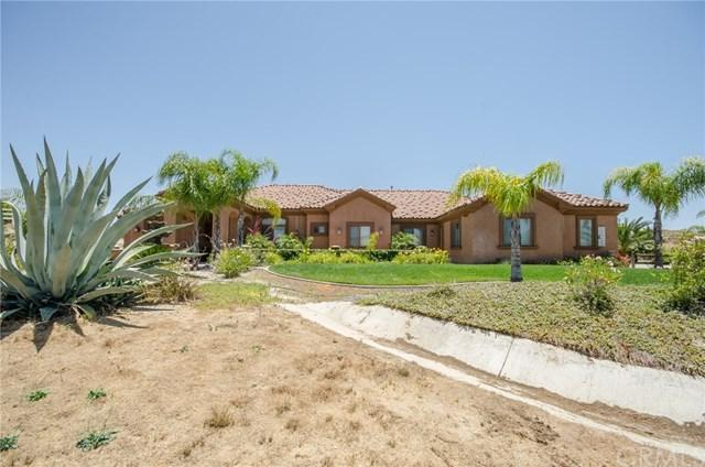 41820 Jojoba Hills Circle, Aguanga, CA 92536 (#SW17139849) :: Allison James Estates and Homes