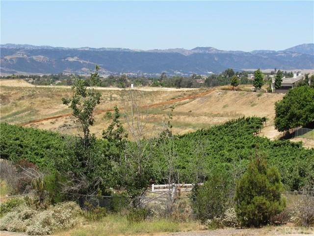 41930 Calle Cabrillo, Temecula, CA 92592 (#SW17145407) :: Allison James Estates and Homes