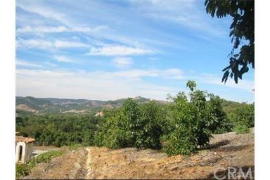 0 Calle Elena, Temecula, CA 87506 (#SW17146051) :: Allison James Estates and Homes