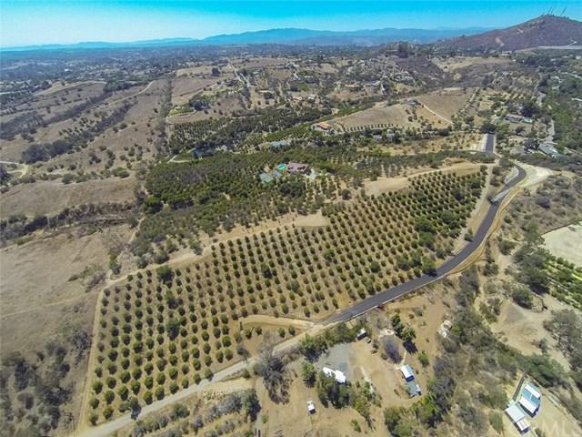 0 Janemar Remainder Parcel Lot 5 Road, Fallbrook, CA 92028 (#SW17163096) :: Dan Marconi's Real Estate Group