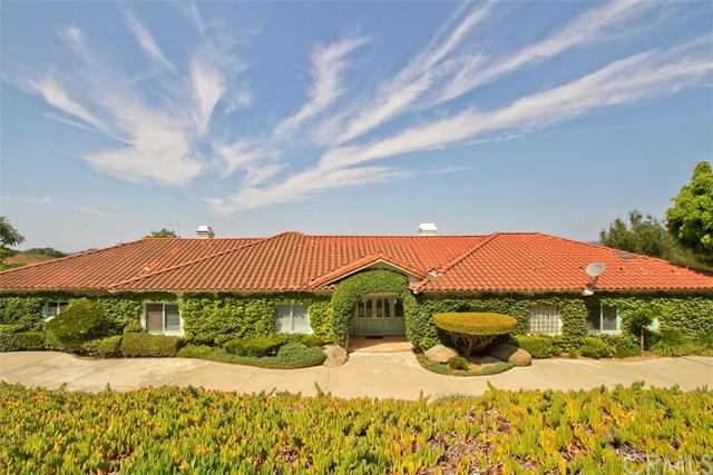 46600 El Prado Road, Temecula, CA 92590 (#SW17166264) :: California Realty Experts