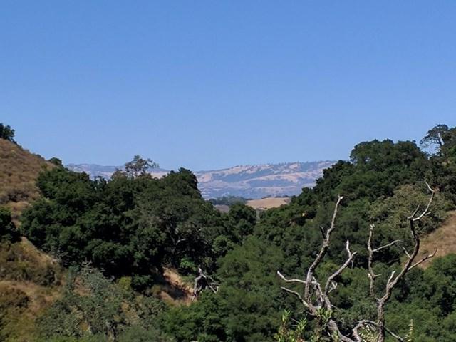 0 Lazo Grande Drive - Photo 1