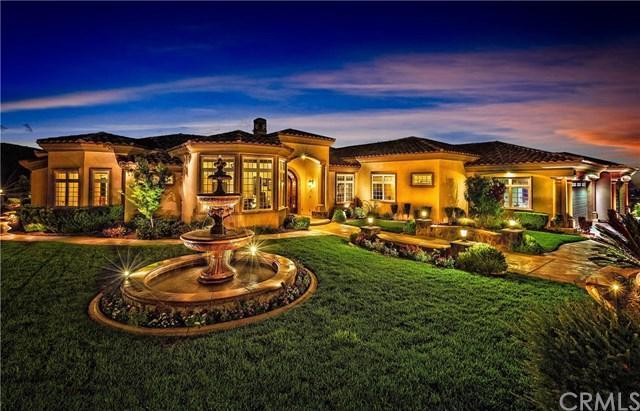 20289 Tonia Court, Lake Mathews, CA 92570 (#SW17210107) :: Dan Marconi's Real Estate Group