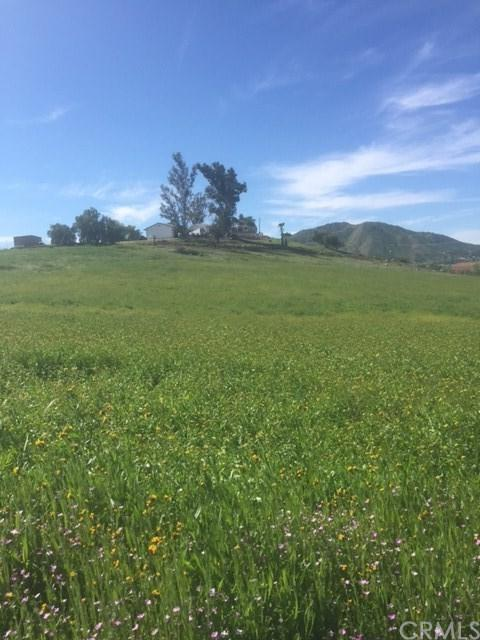 0 Smith Road, Winchester, CA 92596 (#SW17216730) :: Kim Meeker Realty Group