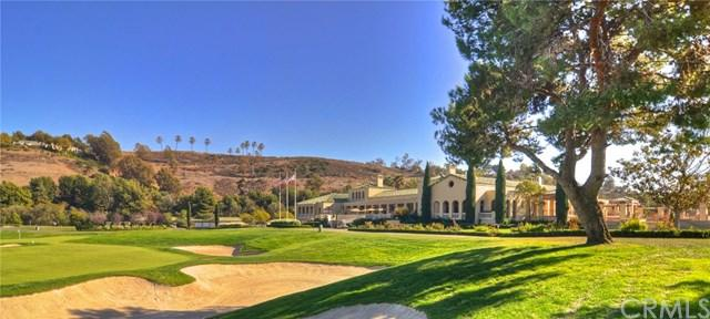 91 Plaza De Las Flores, San Juan Capistrano, CA 92675 (#OC17218001) :: Doherty Real Estate Group