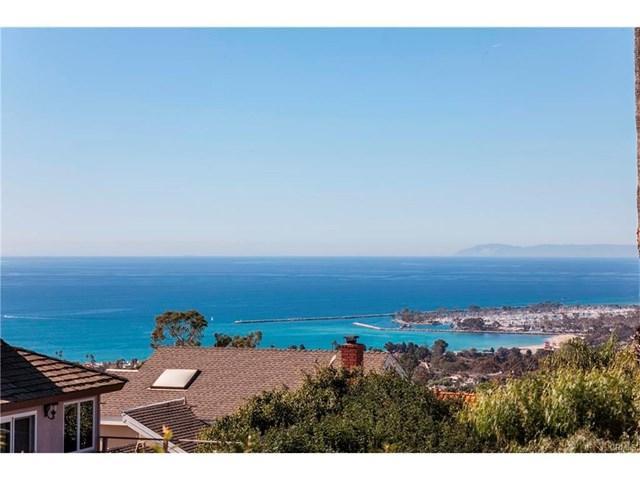 27262 Paseo Peregrino, San Juan Capistrano, CA 92675 (#PW17218802) :: Doherty Real Estate Group