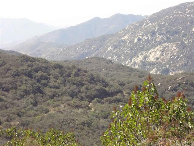 0 Rancho Heights Road, Pala, CA 92059 (#SW17239171) :: Barnett Renderos