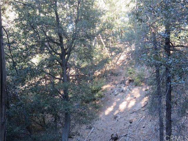 0 Mojave River Road, Cedarpines Park, CA 92322 (#EV17239799) :: Angelique Koster