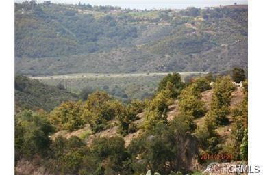 646 Rice Canyon Road, Fallbrook, CA 92028 (#SW17239845) :: Kristi Roberts Group, Inc.