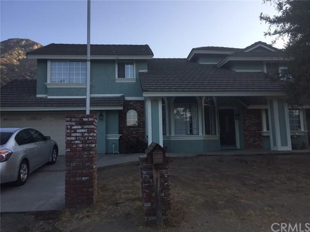 17775 Hayes Avenue, Lake Elsinore, CA 92530 (#SW17240421) :: Allison James Estates and Homes