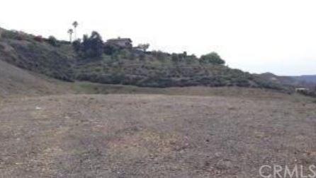 0 Sorrel Lane, Canyon Lake, CA 92587 (#SW17257726) :: Dan Marconi's Real Estate Group