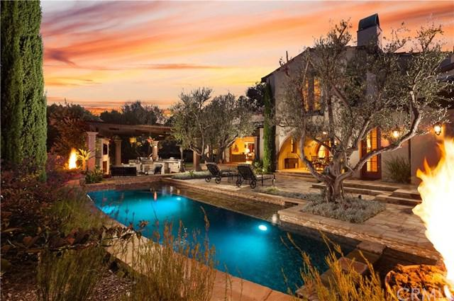 8 San Jose Street, Ladera Ranch, CA 92694 (#OC17253473) :: Doherty Real Estate Group