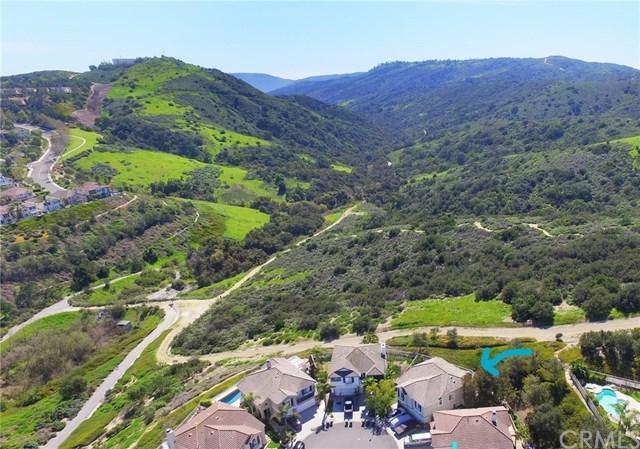 47 Silkwood, Aliso Viejo, CA 92656 (#OC17260890) :: Doherty Real Estate Group
