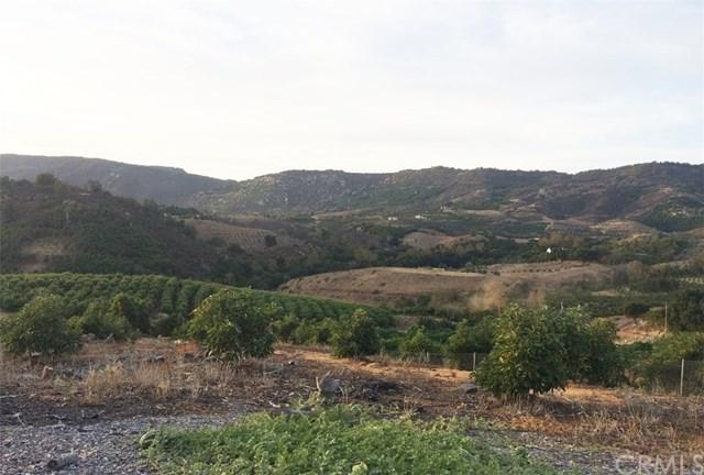 0 El Calamar Road, Temecula, CA 92590 (#SW17262158) :: Dan Marconi's Real Estate Group