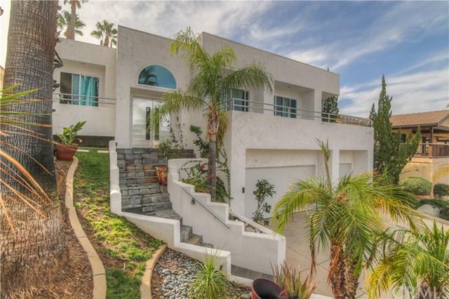22335 Loch Lomond Drive, Canyon Lake, CA 92587 (#SW17265369) :: Dan Marconi's Real Estate Group