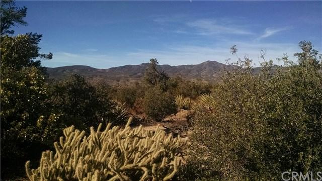 0 S. Palm Canyon, Mountain Center, CA  (#EV17265619) :: RE/MAX Masters