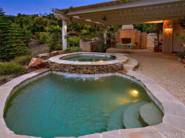 2560 Wilt Road, Fallbrook, CA 92028 (#SW17269209) :: The Val Ives Team