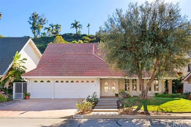 33532 Via De Agua, San Juan Capistrano, CA 92675 (#IG17269609) :: Scott J. Miller Team/RE/MAX Fine Homes