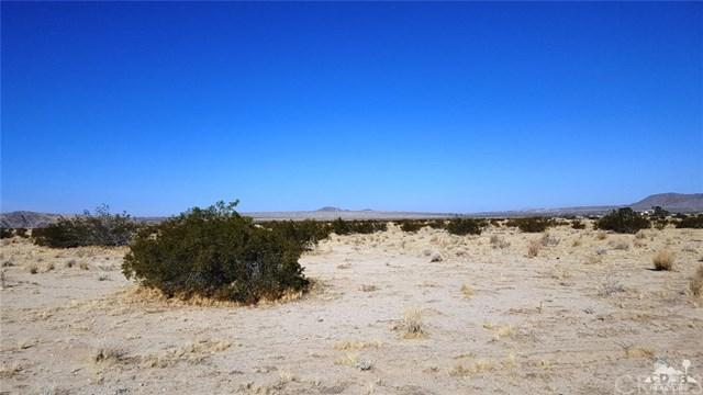 Sunflower Road, Joshua Tree, CA 92252 (#217034524DA) :: RE/MAX Empire Properties