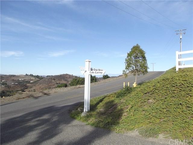 11 La Cruz Drive, Temecula, CA 92590 (#SW17273215) :: Allison James Estates and Homes