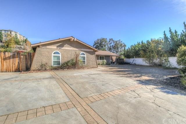 29010 Allan Street, Lake Elsinore, CA 92532 (#SW17275922) :: Dan Marconi's Real Estate Group