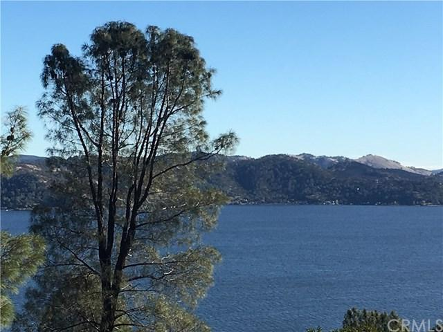3600 Shoreline View Way, Kelseyville, CA 95451 (#LC17281274) :: Z Team OC Real Estate