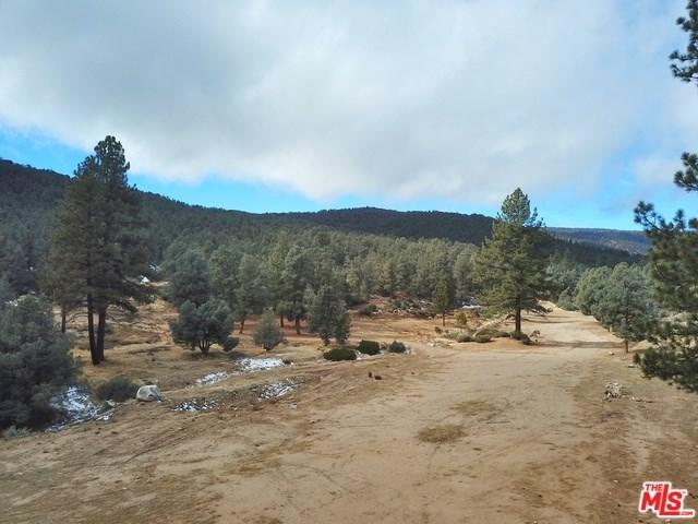 0 Mill Canyon Road, Frazier Park, CA 93225 (#18304284) :: Realty Vault