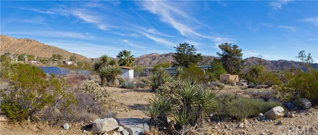 52292 Cactus Lane, Morongo Valley, CA 92256 (#OC18013298) :: California Realty Experts
