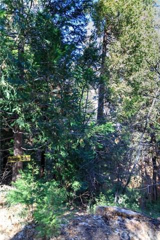 0 Fern Dell, Lake Arrowhead, CA  (#EV18014609) :: Angelique Koster