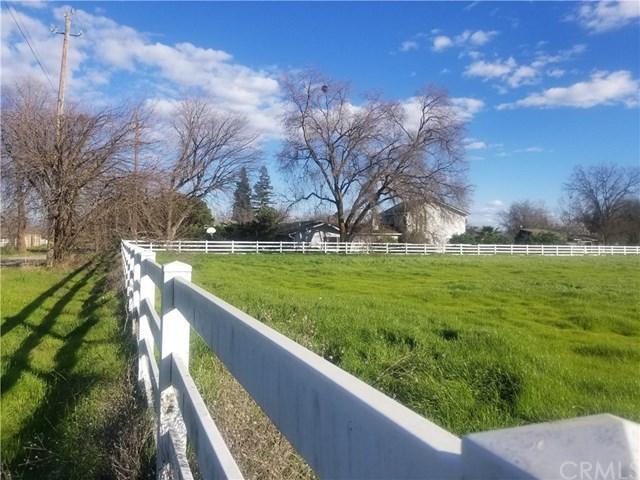 10050 Brunswick Lane, Durham, CA 95938 (#SN18033830) :: The Laffins Real Estate Team