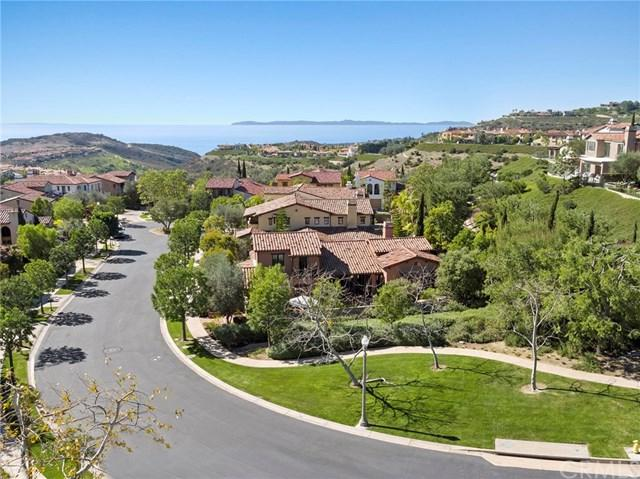 3 Highpoint, Newport Coast, CA 92657 (#NP18034852) :: Fred Sed Realty