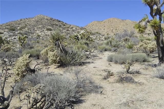 7340 Fairway, Yucca Valley, CA 92284 (#JT18037740) :: The DeBonis Team