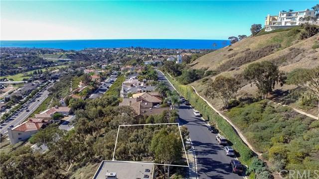 20 Marana, San Clemente, CA 92673 (#OC18041795) :: Teles Properties | A Douglas Elliman Real Estate Company