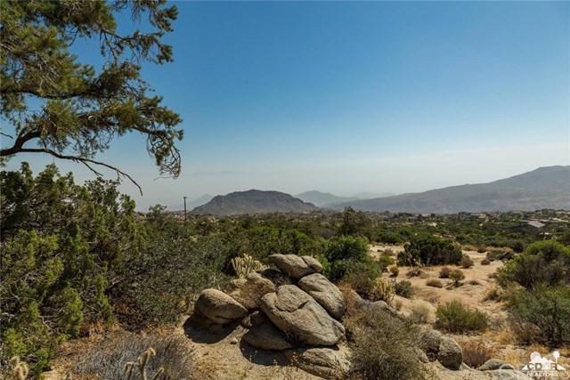 40 Yucca Rd, Mountain Center, CA 92561 (#218006086DA) :: Realty Vault