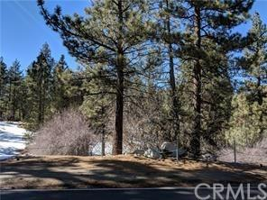 557 Division Drive, Big Bear, CA 92314 (#PW18044054) :: RE/MAX Masters