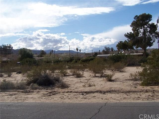 0 Morongo Road - Photo 1