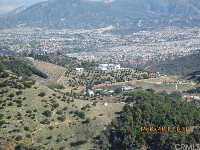 27690 Via Fuerte - Photo 1