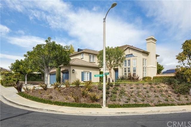 32 Bridgeport Road, Newport Coast, CA 92657 (#NP18054472) :: Fred Sed Realty