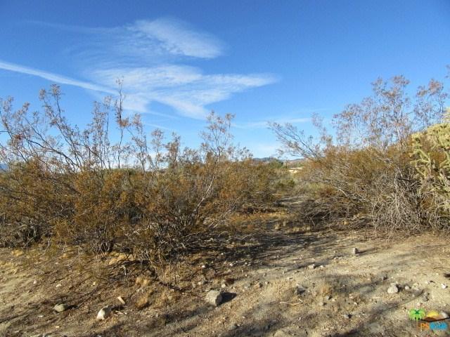 0 Ramona Trail, Morongo Valley, CA 92256 (#18324216PS) :: Z Team OC Real Estate