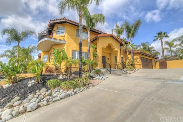 30338 Spray Drive, Canyon Lake, CA 92587 (#IV18062097) :: Dan Marconi's Real Estate Group