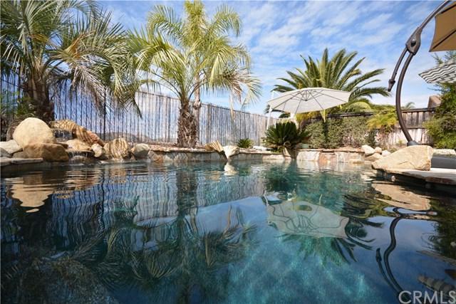 46169 Via La Colorada, Temecula, CA 92592 (#SW18065187) :: Dan Marconi's Real Estate Group