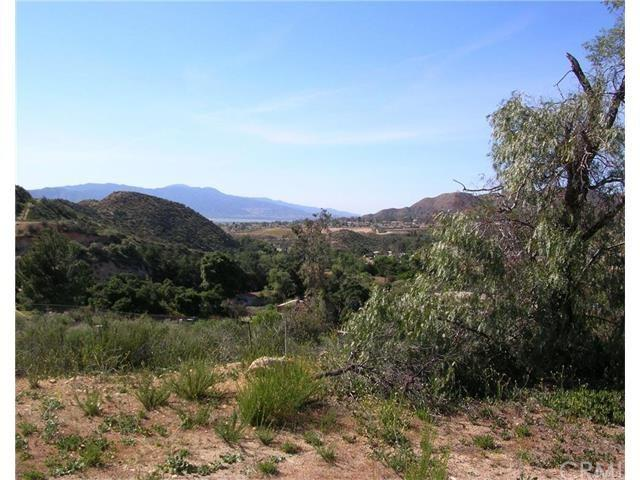 0 Oak Circle, Wildomar, CA 34479 (#SW18066696) :: Kim Meeker Realty Group