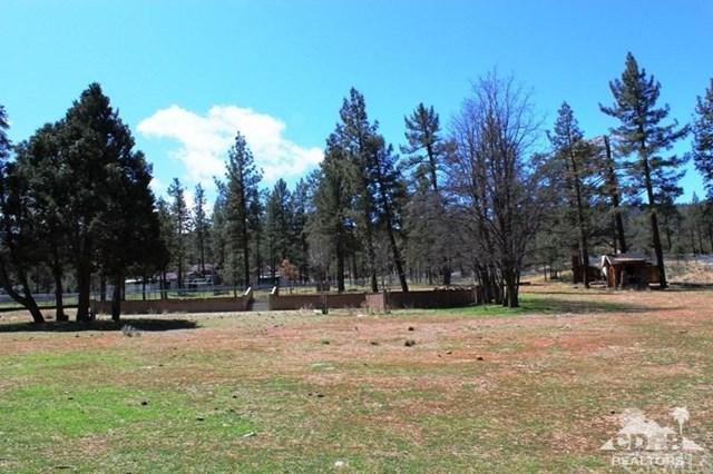59777 Highway 74, Mountain Center, CA 92561 (#218009472DA) :: Impact Real Estate