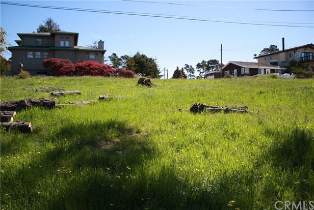 1 Richard Avenue, Cambria, CA 93428 (#PI18071736) :: Pismo Beach Homes Team