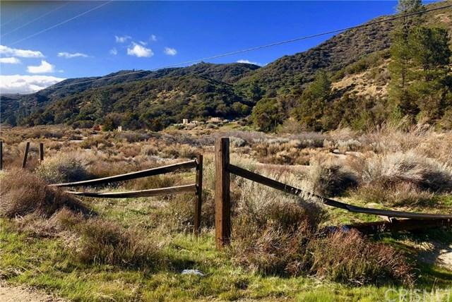 20129 Pine Canyon Road, Lake Hughes, CA 93532 (#SR18072366) :: The Ashley Cooper Team
