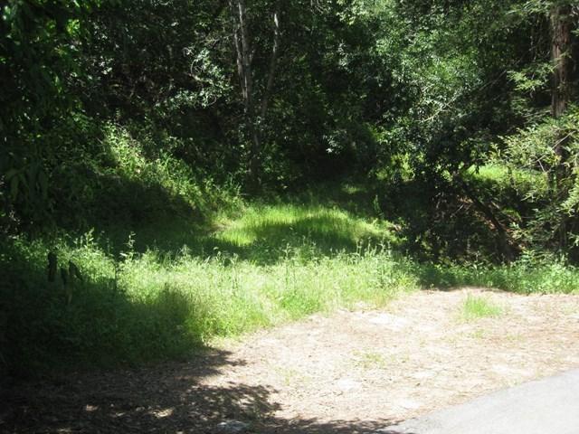 12 Montecito Road - Photo 1