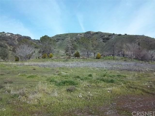 341 E Houser Avenue, Lebec, CA 93243 (#SR18085822) :: Kristi Roberts Group, Inc.