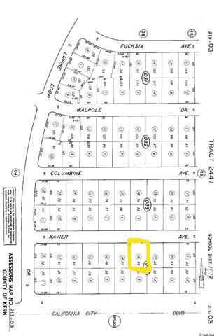 0 Xavier Avenue, California City, CA 93505 (#318001424) :: Barnett Renderos